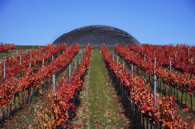 (Italiano) Wine Enthusiast premia ancora Tenuta Castelbuono